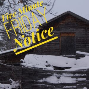 Five Minute Friday: Notice