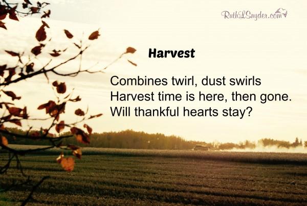 Harvest Haiku